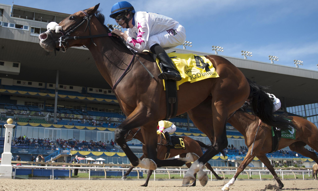 Bison City Stakes won by Caren