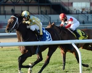 Dynamic Sky Defeats champion Big Blue Kitten in Red Smith H. (G3)